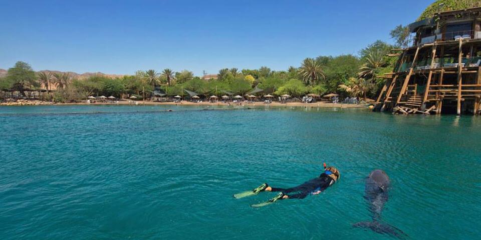 эйлат, израиль, дельфиний риф, подводная обсерватория